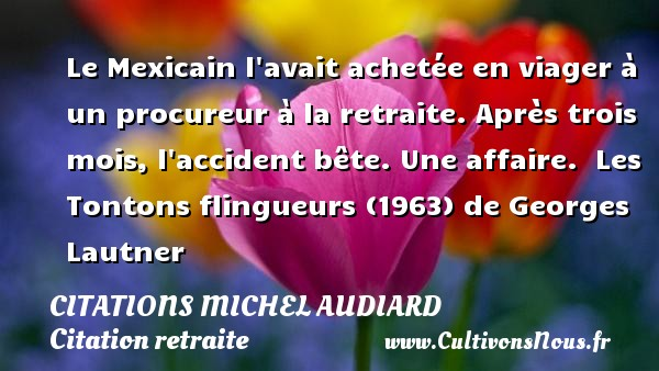 Le Mexicain l avait achetée en viager à un procureur à la retraite. Après trois mois, l accident bête. Une affaire.   Les Tontons flingueurs (1963) de Georges Lautner  Citations de Michel Audiard    CITATIONS MICHEL AUDIARD - Citation retraite