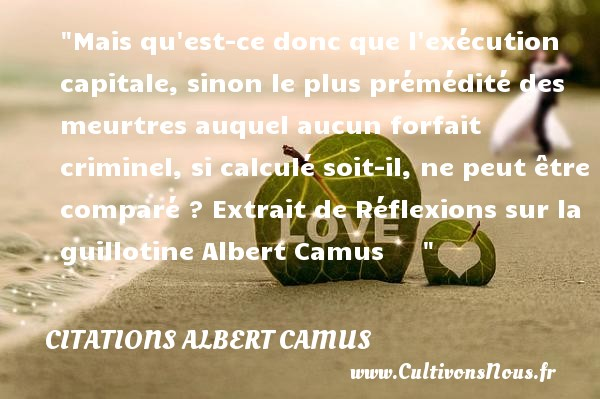 mais qu 39 est ce donc que l 39 ex cution capitale citations albert camus cultivons nous. Black Bedroom Furniture Sets. Home Design Ideas