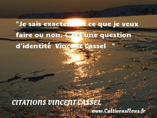 Citations Vincent Cassel - Je sais exactement ce que je veux faire ou non. C est une question d identité   Vincent Cassel    CITATIONS VINCENT CASSEL
