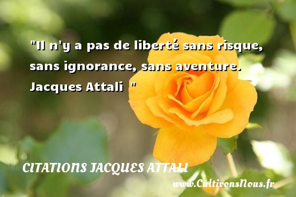 Il n y a pas de liberté sans risque, sans ignorance, sans aventure.  Jacques Attali   CITATIONS JACQUES ATTALI - Citation aventure
