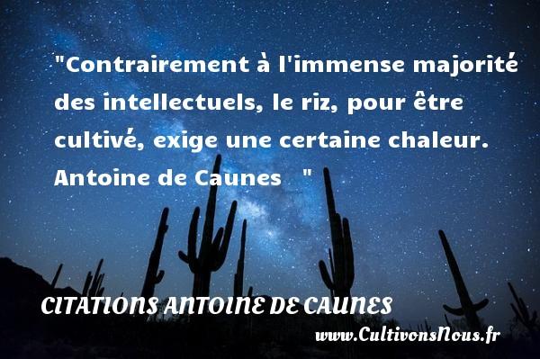 Citations - Citations Antoine de Caunes - Citation chaleur - Contrairement à l immense majorité des intellectuels, le riz, pour être cultivé, exige une certaine chaleur.   Antoine de Caunes    CITATIONS ANTOINE DE CAUNES