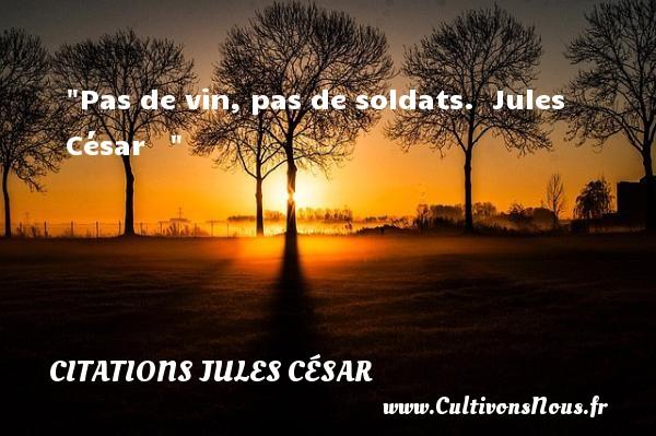 Pas de vin, pas de soldats.   Jules César    CITATIONS JULES CÉSAR - Citations Jules César