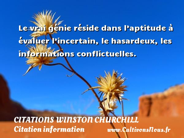 Le vrai génie réside dans l'aptitude à évaluer l'incertain, le hasardeux, les informations conflictuelles.   Une citation de Winston Churchill    CITATIONS WINSTON CHURCHILL - Citation information