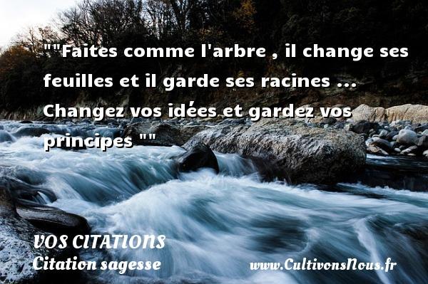 Faites comme l arbre , il change ses feuilles et il garde ses racines ... Changez vos idées et gardez vos principes VOS CITATIONS - Citation sagesse