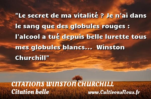 Citations Winston Churchill - Citation belle - Le secret de ma vitalité ? Je n ai dans le sang que des globules rouges : l alcool a tué depuis belle lurette tous mes globules blancs...   Winston Churchill   Une citation sur belle    CITATIONS WINSTON CHURCHILL
