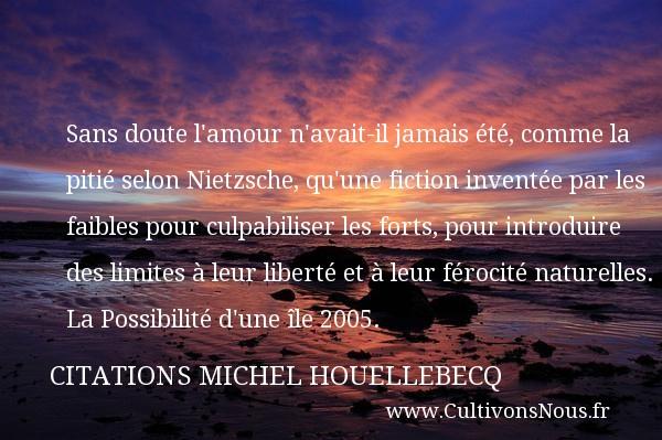 Sans Doute L Amour Citations Michel Houellebecq