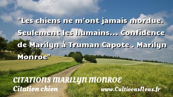 Citations Marilyn Monroe - Citation chien - Les chiens ne m ont jamais mordue. Seulement les humains...  Confidence de Marilyn à Truman Capote . Marilyn Monroe   Une citation sur le chien CITATIONS MARILYN MONROE