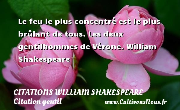 Le feu le plus concentré est le plus brûlant de tous.  Les deux gentilhommes de Vérone. William Shakespeare CITATIONS WILLIAM SHAKESPEARE - Citation gentil