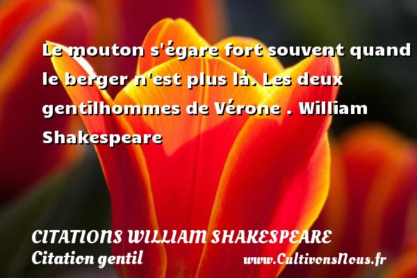 Le mouton s égare fort souvent quand le berger n est plus là.  Les deux gentilhommes de Vérone . William Shakespeare CITATIONS WILLIAM SHAKESPEARE - Citation gentil