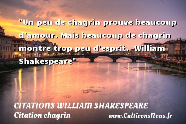 Citations William Shakespeare - Citation chagrin - Un peu de chagrin prouve beaucoup d amour. Mais beaucoup de chagrin montre trop peu d esprit.   William Shakespeare   Une citation sur le chagrin CITATIONS WILLIAM SHAKESPEARE