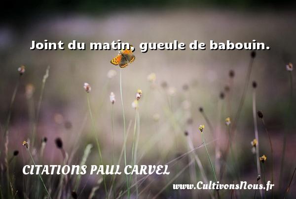 Joint du matin, gueule de babouin. Une citation de Paul Carvel CITATIONS PAUL CARVEL