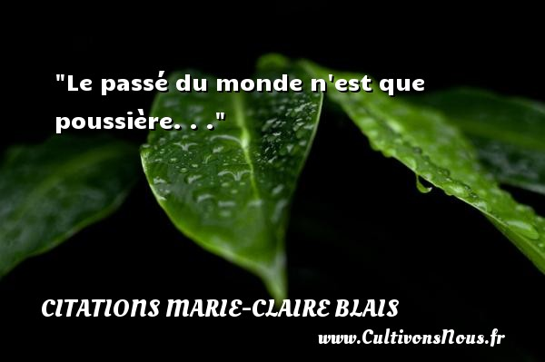 citation marie claire blais les citations de marie claire blais. Black Bedroom Furniture Sets. Home Design Ideas