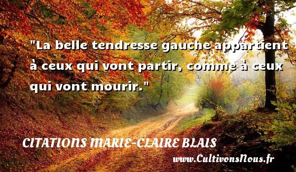 Citations Marie-Claire Blais - Citation tendresse - La belle tendresse gauche appartient à ceux qui vont partir, comme à ceux qui vont mourir. Une citation de Marie-Claire Blais CITATIONS MARIE-CLAIRE BLAIS