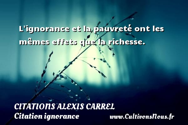 Citations Alexis Carrel - Citation ignorance - L ignorance et la pauvreté ont les mêmes effets que la richesse. Une citation d  Alexis Carrel CITATIONS ALEXIS CARREL