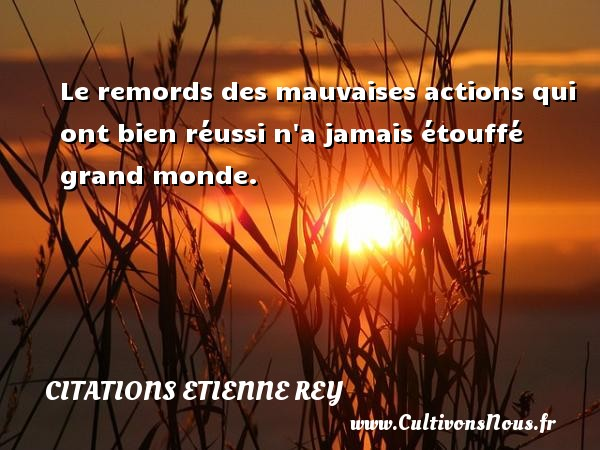 Citations Etienne Rey - Le remords des mauvaises actions qui ont bien réussi n a jamais étouffé grand monde. Une citation d  Etienne Rey CITATIONS ETIENNE REY