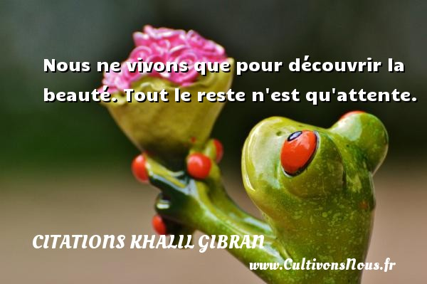 Citations Khalil Gibran - Nous ne vivons que pour découvrir la beauté. Tout le reste n est qu attente. Une citation de Khalil Gibran CITATIONS KHALIL GIBRAN