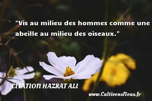 Citation Hazrat Ali - Vis au milieu des hommes comme une abeille au milieu des oiseaux. Une citation de Hazrat Ali CITATION HAZRAT ALI