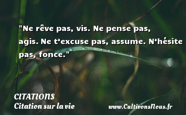 Citations - Citation sur la vie - Ne rêve pas, vis. Ne pense pas, agis. Ne t'excuse pas, assume. N'hésite pas, fonce. CITATIONS