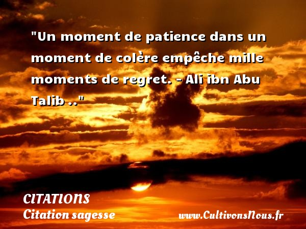 Citations - Citation sagesse - Un moment de patience dans un moment de colère empêche mille moments de regret. - Ali ibn Abu Talib .. CITATIONS
