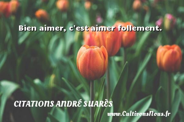 Bien aimer, c est aimer follement. Une citation d  André Suarès CITATIONS ANDRÉ SUARÈS - Citations André Suarès