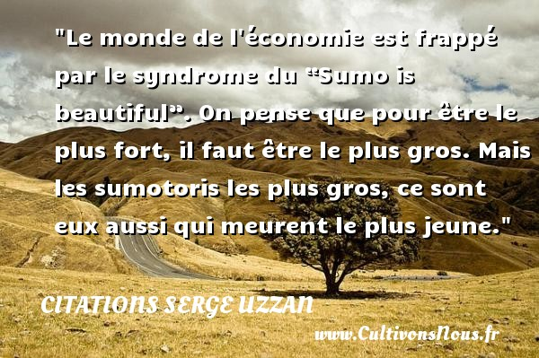 """Le monde de l économie est frappé par le syndrome du """"Sumo is beautiful"""". On pense que pour être le plus fort, il faut être le plus gros. Mais les sumotoris les plus gros, ce sont eux aussi qui meurent le plus jeune. Une citation de Serge Uzzan CITATIONS SERGE UZZAN"""