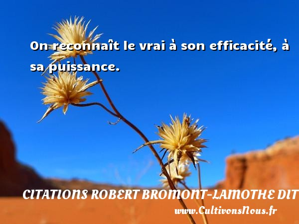 On reconnaît le vrai à son efficacité, à sa puissance. Une citation de Robert Bresson CITATIONS ROBERT BROMONT-LAMOTHE DIT BRESSON