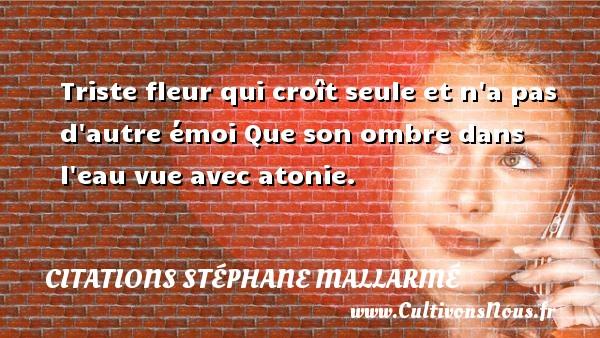 Citations Stéphane Mallarmé - Citation les larmes - Triste fleur qui croît seule et n a pas d autre émoi Que son ombre dans l eau vue avec atonie. Une citation de Stéphane Mallarmé CITATIONS STÉPHANE MALLARMÉ