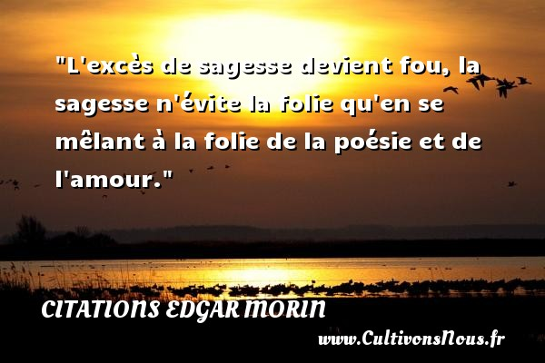 Célèbre Citation Edgar Morin : Les citations d'Edgar Morin - Cultivonsnous.fr LV67