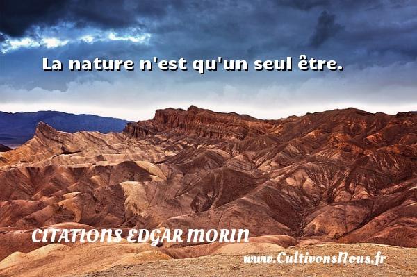 La nature n est qu un seul être. Une citation d  Edgar Morin CITATIONS EDGAR MORIN