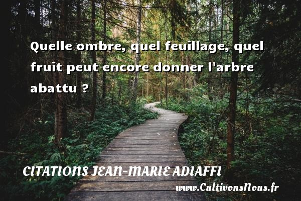 Quelle ombre, quel feuillage, quel fruit peut encore donner l arbre abattu ? Une citation de Jean-Marie Adiaffi CITATIONS JEAN-MARIE ADIAFFI - Citation fruit