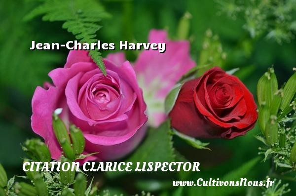 Jean-Charles Harvey Une citation de Clarice Lispector CITATION CLARICE LISPECTOR