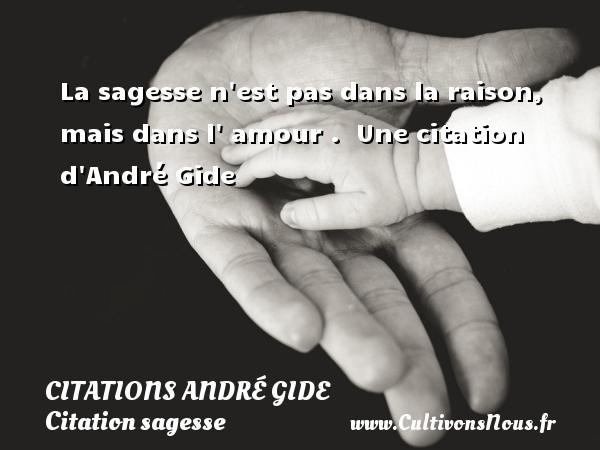 La Sagesse N Est Pas Dans La Raison Citations Citations Andre