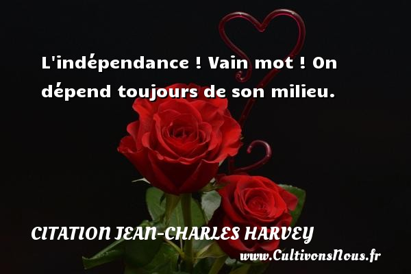 L indépendance ! Vain mot ! On dépend toujours de son milieu. Une citation de Jean-Charles Harvey CITATION JEAN-CHARLES HARVEY