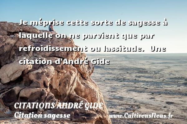 Je méprise cette sorte de sagesse à laquelle on ne parvient que par refroidissement ou lassitude.   Une  citation  d André Gide CITATIONS ANDRÉ GIDE - Citations André Gide - Citation sagesse