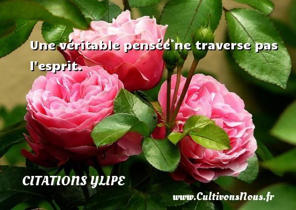 Une véritable pensée ne traverse pas l esprit. Une citation d  Ylipe CITATIONS YLIPE