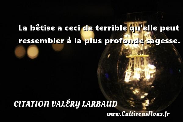 Citation Valéry Larbaud - La bêtise a ceci de terrible qu elle peut ressembler à la plus profonde sagesse. Une citation de Valery Larbaud CITATION VALÉRY LARBAUD