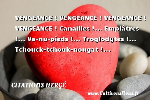 Citations Hergé - Citation vengeance - VENGEANCE ! VENGEANCE ! VENGEANCE ! VENGEANCE ! Canailles !... Emplâtres !... Va-nu-pieds !... Troglodytes !... Tchouck-tchouk-nougat !... Une citation de Hergé CITATIONS HERGÉ