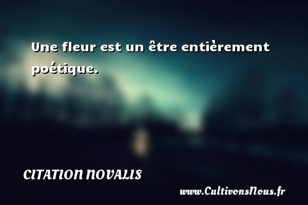 Citation Novalis - Une fleur est un être entièrement poétique. Une citation de Novalis CITATION NOVALIS