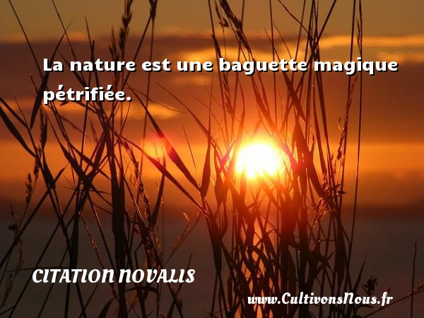 Citation Novalis - La nature est une baguette magique pétrifiée. Une citation de Novalis CITATION NOVALIS