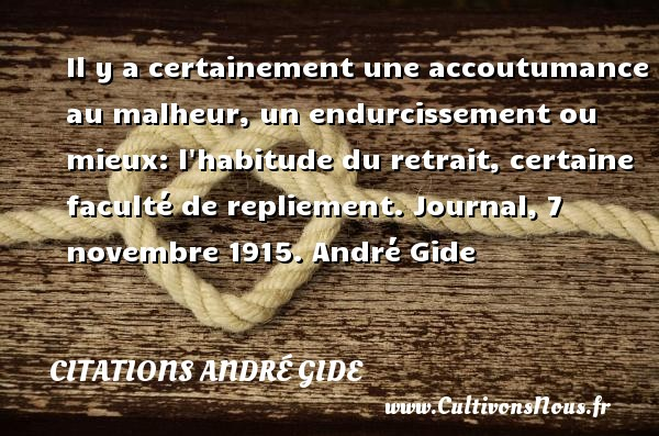 Il y a certainement une accoutumance au malheur, un endurcissement ou mieux: l habitude du retrait, certaine faculté de repliement.  Journal, 7 novembre 1915. André Gide CITATIONS ANDRÉ GIDE - Citations André Gide