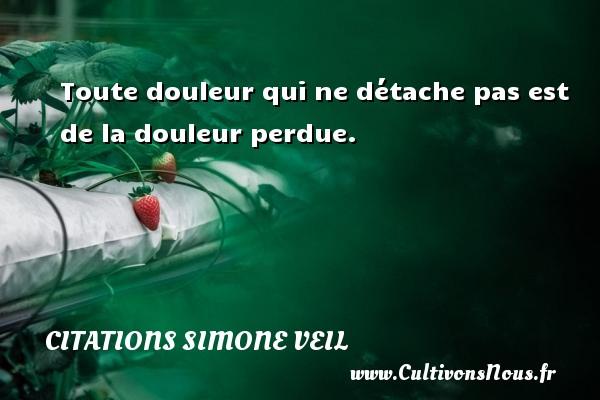 Citations - Citations Simone Veil - Toute douleur qui ne détache pas est de la douleur perdue.   Une citation de Simone Veil CITATIONS SIMONE VEIL
