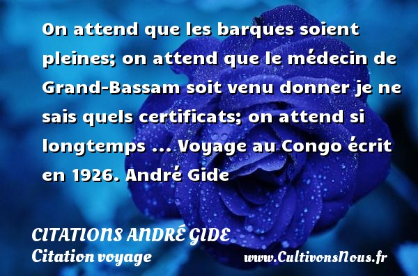 On attend que les barques soient pleines; on attend que le médecin de Grand-Bassam soit venu donner je ne sais quels certificats; on attend si longtemps ...  Voyage au Congo écrit en 1926. André Gide CITATIONS ANDRÉ GIDE - Citations André Gide - Citation voyage