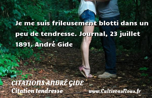 Je me suis frileusement blotti dans un peu de tendresse.  Journal, 23 juillet 1891. André Gide CITATIONS ANDRÉ GIDE - Citations André Gide - Citation tendresse