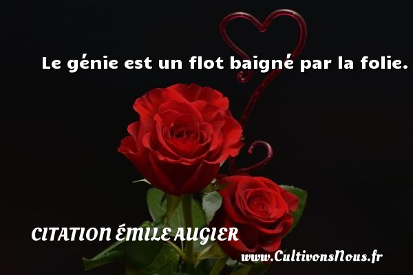 Le génie est un flot baigné par la folie. Une citation d  Emile Augier CITATION ÉMILE AUGIER