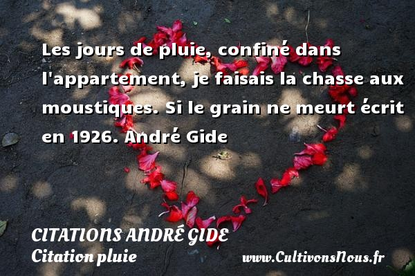 Les jours de pluie, confiné dans l appartement, je faisais la chasse aux moustiques.  Si le grain ne meurt écrit en 1926. André Gide CITATIONS ANDRÉ GIDE - Citations André Gide - Citation pluie