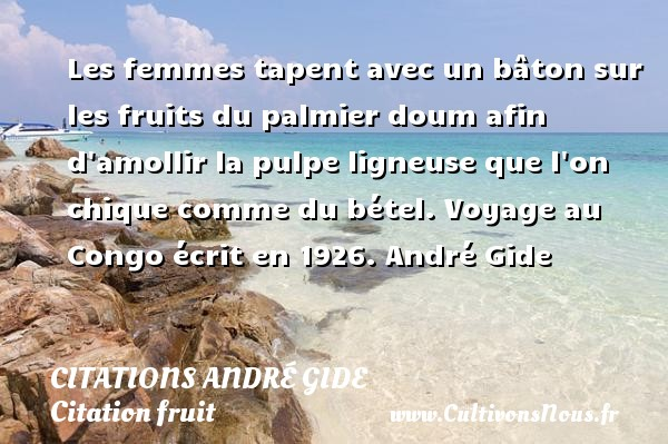 Les femmes tapent avec un bâton sur les fruits du palmier doum afin d amollir la pulpe ligneuse que l on chique comme du bétel.  Voyage au Congo écrit en 1926. André Gide    CITATIONS ANDRÉ GIDE - Citations André Gide - Citation fruit