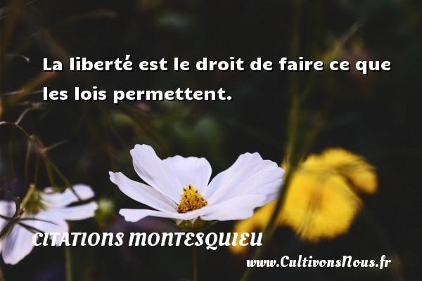 Citations Montesquieu - La liberté est le droit de faire ce que les lois permettent. Une citation de Montesquieu CITATIONS MONTESQUIEU