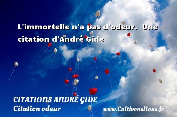 L immortelle n a pas d odeur.   Une  citation  d André Gide CITATIONS ANDRÉ GIDE - Citations André Gide - Citation odeur