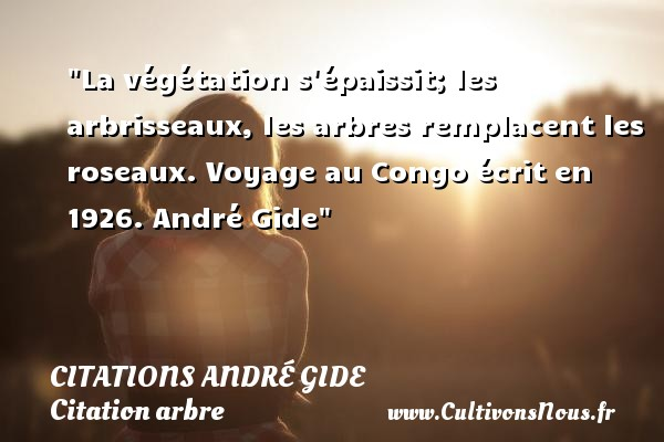 La végétation s épaissit; les arbrisseaux, les arbres remplacent les roseaux.  Voyage au Congo écrit en 1926. André Gide   Une citation sur arbre CITATIONS ANDRÉ GIDE - Citations André Gide - Citation arbre - Citation état