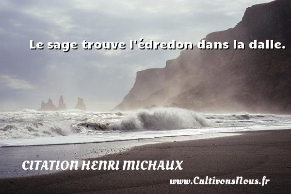 Le sage trouve l édredon dans la dalle. Une citation de Henri Michaux CITATION HENRI MICHAUX